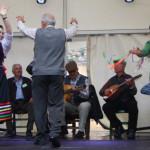 Bicentenario 2011